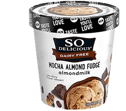 Mocha Almond Fudge Almondmilk Frozen Dessert