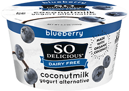 Blueberry Coconutmilk Yogurt
