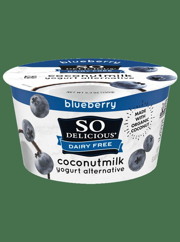 Blueberry Coconutmilk Yogurt